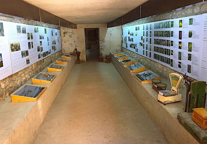 Kars Boğatepe Köyü Peynir Müzesi