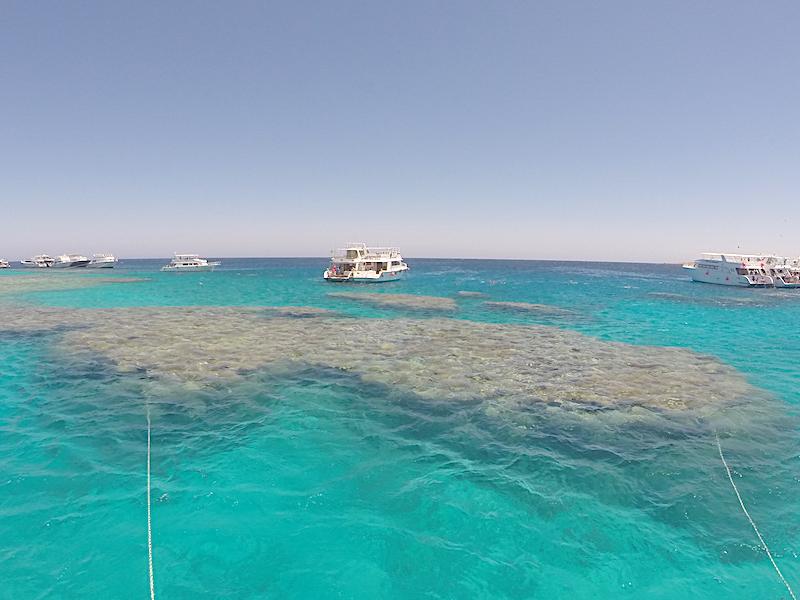 Dalış & Şnorkel