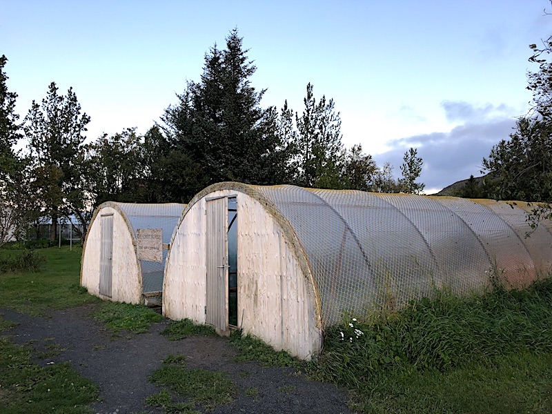Hobbit House dedikleri eski seralar ve Hverinn kamp alanı