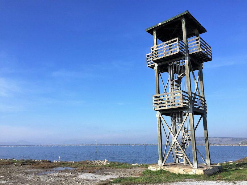 Gözetleme kulesi ve arkada flamingolar