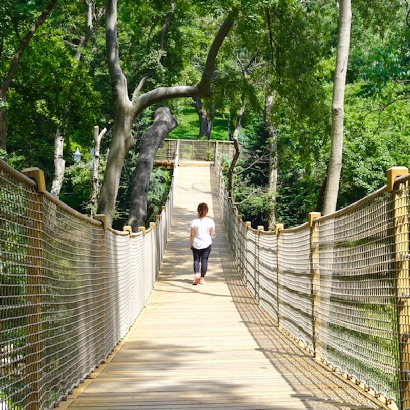 Yıldız Parkı Asma Köprüsü