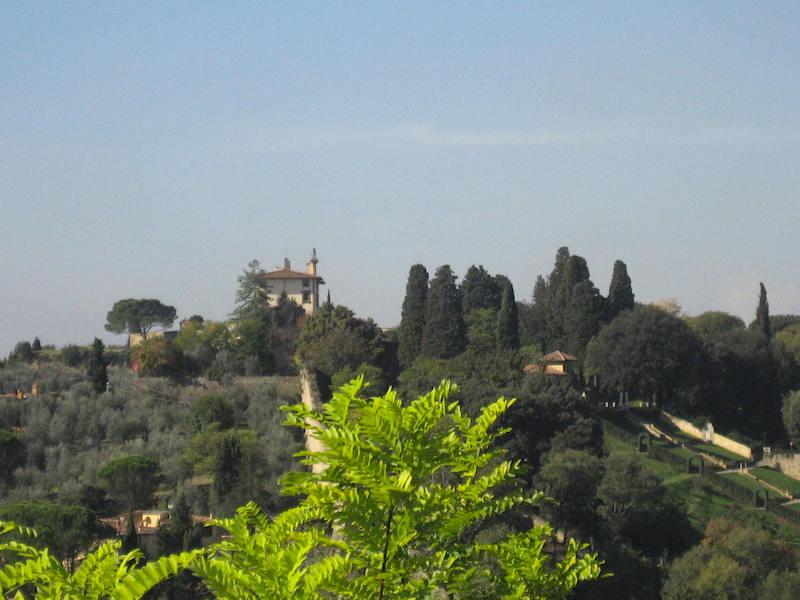Floransa Michelangelo Tepesi