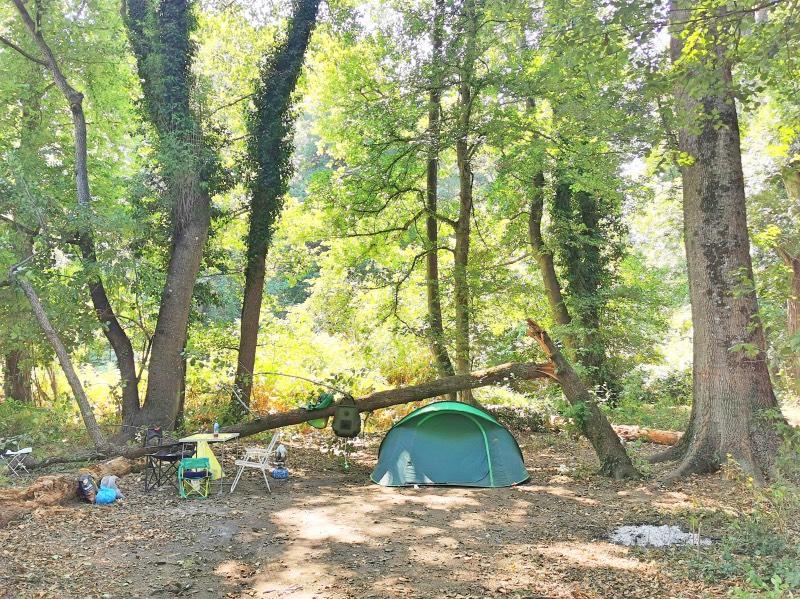 İğneada Longoz Ormanları'nda Kamp Yapılır mı?