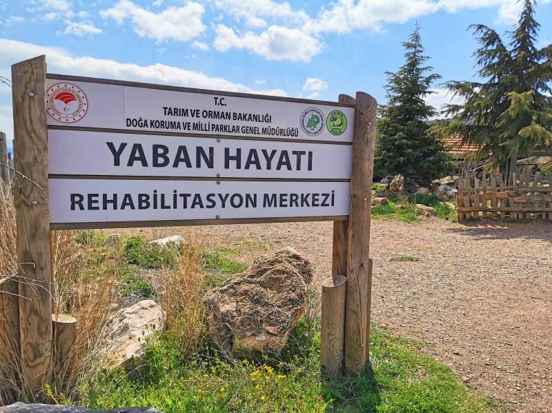 Lisinia Yaban Hayatı Rehabilitasyon Merkezi